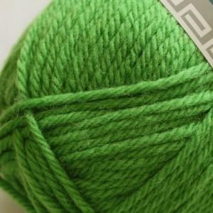 Peruvian Highland Wool 279 pomme verte