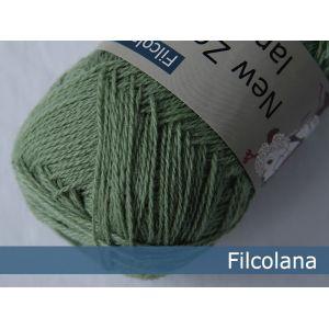 NZL 123 lichen