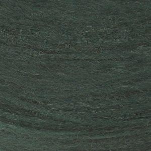 Plötulopi 0484 vert forêt