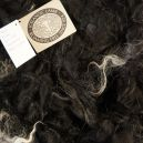 Kvika 2011-268 Black mouflon