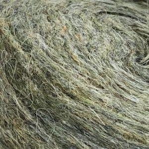 Plötulopi 2021 Frost grass