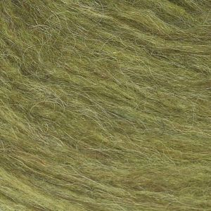 Plötulopi 1423 vert clair