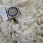 Frosta 2016-305 White