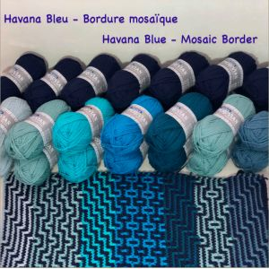 Havana Blue MOSAIC border